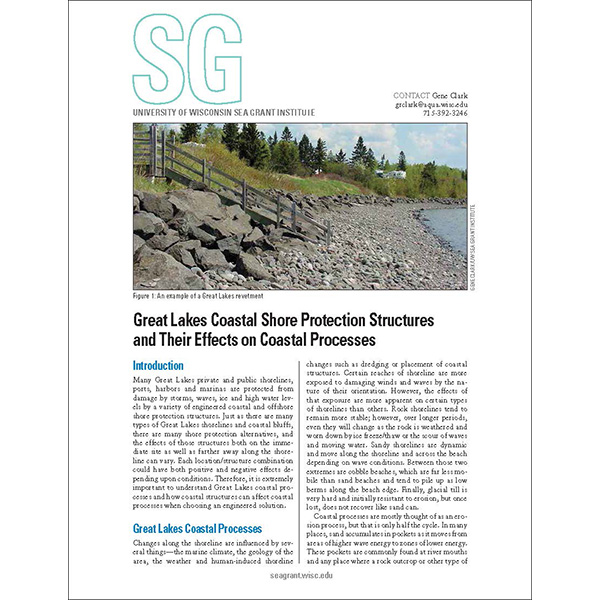 Great Lakes Coastal Shore Protection Structures and Their